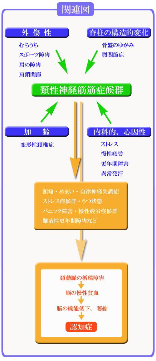 頚性神経筋症候群の原因として考えられるものとの関連図